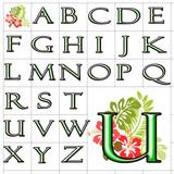 ABC Alphabet background hibiscus felix green design poster