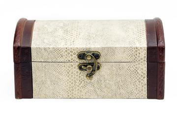 wood box with snake skin