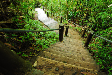 stone stair on nature park