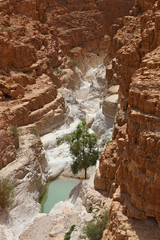 The canyon and a small pool of water
