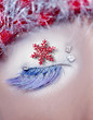 christmas star concept eye makeup winter red silver