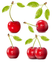 Vector illustration. Cherries with water drops.