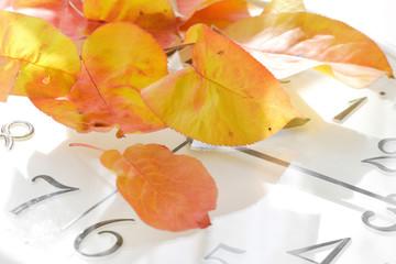 時計と落葉