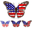 set of america butterfly isolated on white background