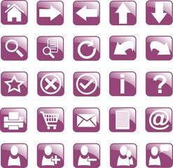 icone web 1