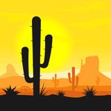Fototapety Cactus plants in desert
