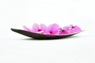 Pink Flower Boat