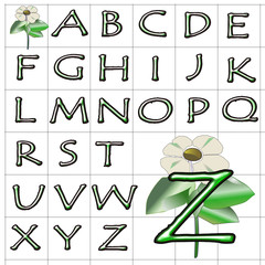 ABC Alphabet background wood tempus green design