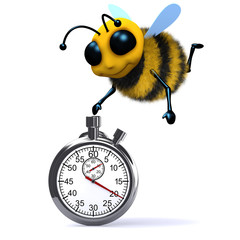 3d Bee starts the stopwatch