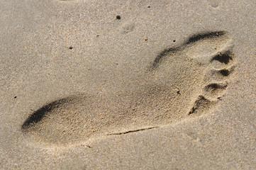 Sandstrand, Symbol