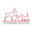 vet-hospital