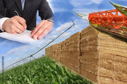 Agriculture biologique - 34067400