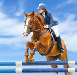 Equestrian sport: show jumping / young woman and sorrel stallion poster