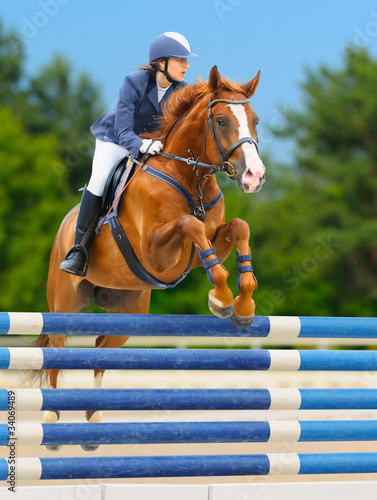 Equestrian sport: show jumping / young woman and sorrel stallion