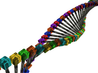 Model of DNA with metal rods and cubes of glass №1