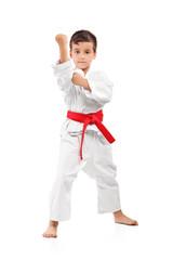 A karate kid posing