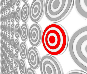 One Red Bulls-Eye Target - Niche Market Audience