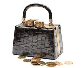Female leather handbag with coins