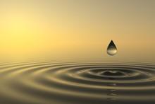 Baisse Zen tombe à l'eau
