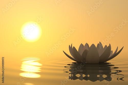 Zen kwiatu lotos na zmierzchu