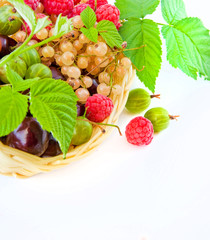 Basket with a raspberry, a cherry and a gooseberry