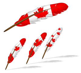 abstract canada flag feather isolated on white background