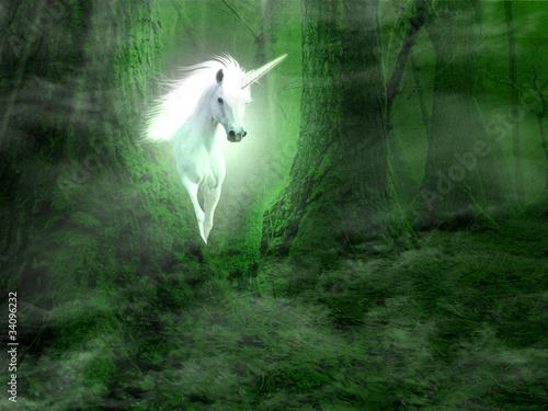 Fototapeten,einhorn,märchen,magical,magie