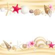 Seashell frame - 34109093