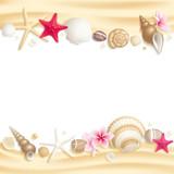 Fototapety Seashell frame