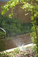 Water splashing from pipe in a garden
