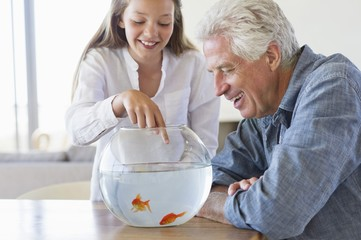 Girl showing a golden fish to her grandfather in a fishbowl