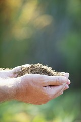 Close-up of a man's hand holding soil