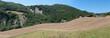 panoramica di un campo di grano appena tagliato
