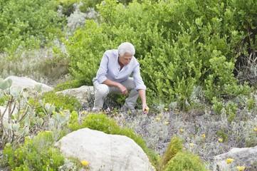 Senior man picking flowers in a garden