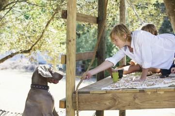 Boy feeding a dog from tree house