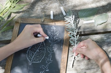Little boy making drawing of leaves on slate outdoors