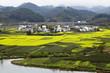 rural landscape in wuyuan county, jiangxi, china
