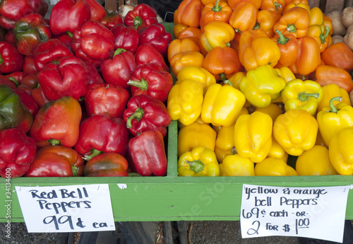 many colors of peppers