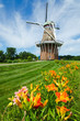 Summer flowers with historic duch windmill on background