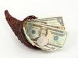 Us-amerikanische Dollar