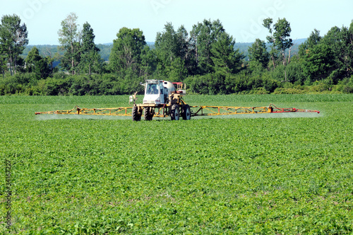 Full front view of tractor spraying pesticide on crop