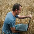 agriculteur et ordinateur dans un champ de blé