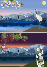 compositions with birds near mountain lakes
