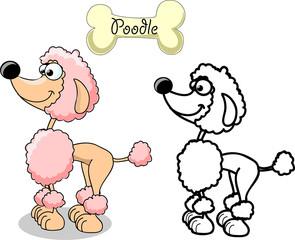 Мультфильм собака породы пудель