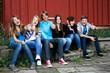 Leinwanddruck Bild - 7.11 teenager vor de Hütte