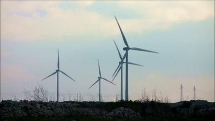 turbine eoliche con stormo di uccelli