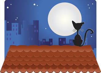 Gato preto no telhado