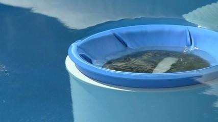 Filtro di superficie per piscina