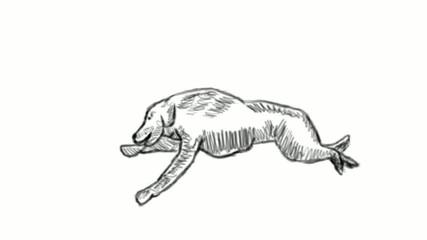 cartoon - running gog isolated on background