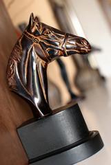 testa di cavallo - horse head